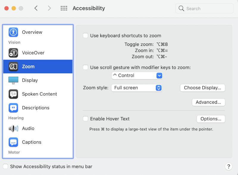 Chuyển đến tùy chọn Thu phóng và nhấp vào Tùy chọn khác.  Tại sao con trỏ của tôi biến mất Mac?