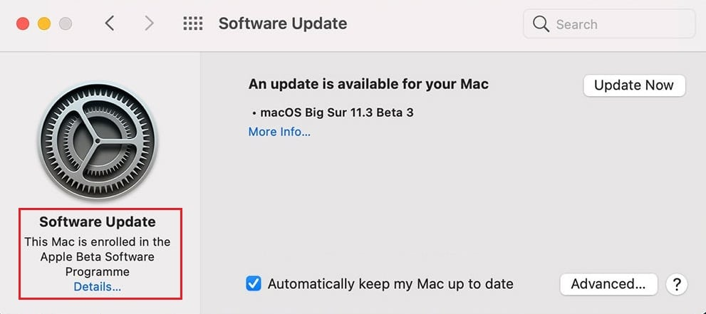Nhấp vào tùy chọn Chi tiết nằm bên dưới Máy Mac này đã được đăng ký trong Chương trình Phần mềm Beta của Apple